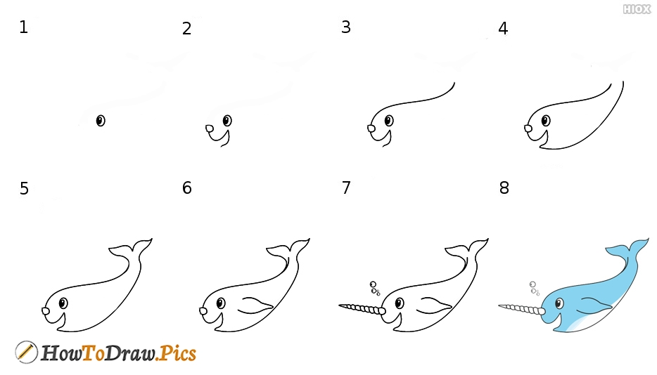 How To Draw Narwhal