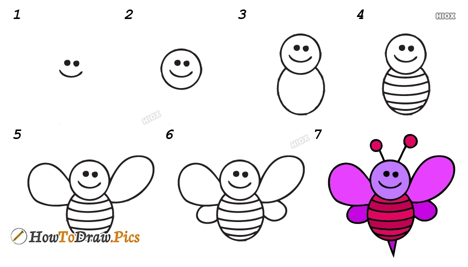 How To Draw Realistic Bee