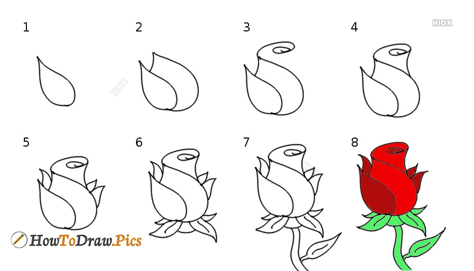 How To Draw Flower Pictures Step By Step Tutorial