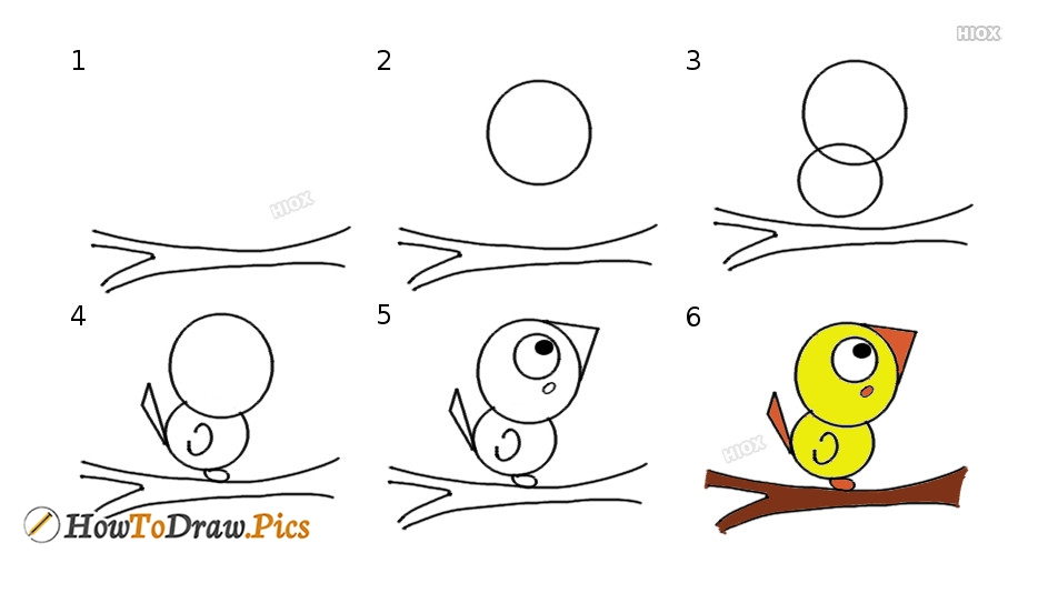 How To Draw Step By Step Bird