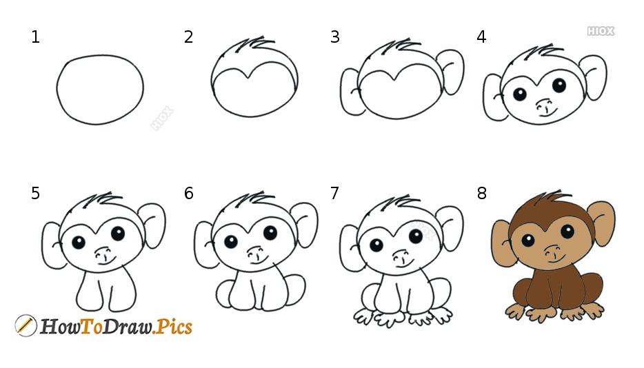 How To Draw Step By Step Monkey