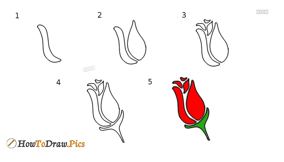 How To Draw Step By Step Rose