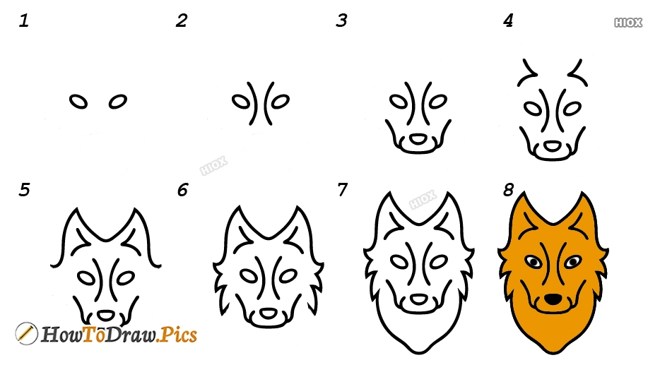 How To Draw A Wolf Step-by-Step