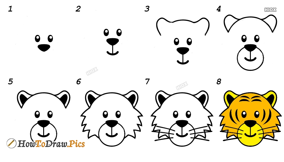 How To Draw Tiger Step By Step