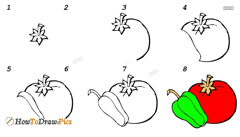 How To Draw Vegetables Step by Step Pictures