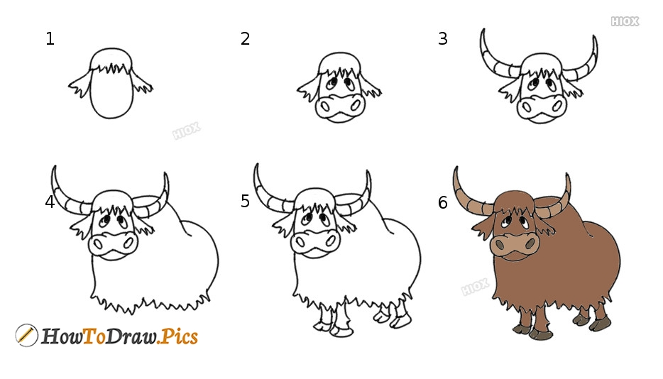 How To Draw Yak For Kids