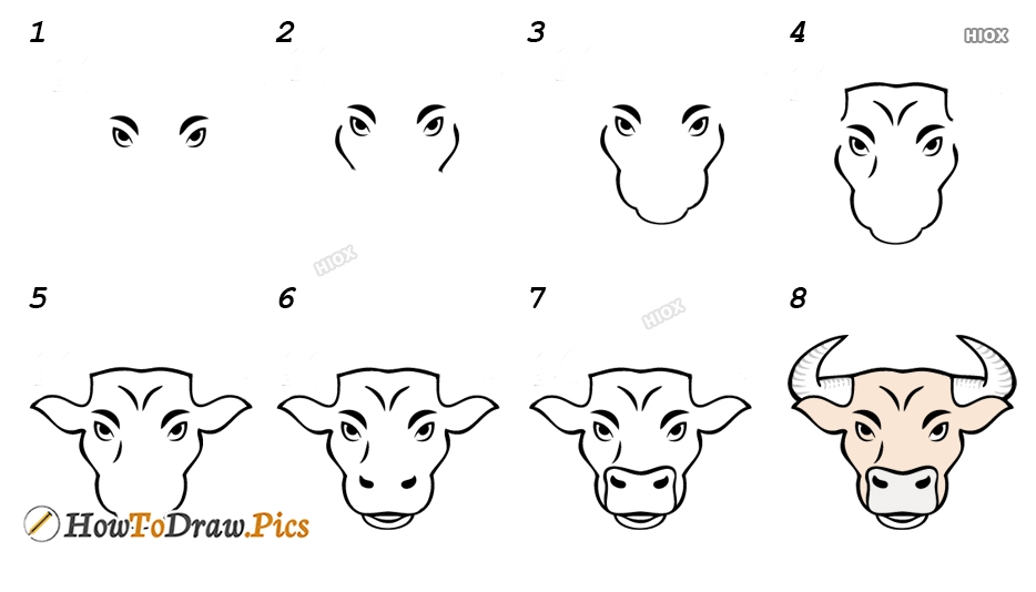 How To Draw Yak Step By Step
