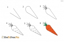 How to draw carrot step by step easy