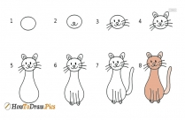 How To Draw Cat Step by Step Drawing Lessons