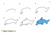 How To Draw A Step By Step Dolphin