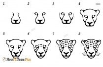 How To Draw Animals Step By Step With Pencil