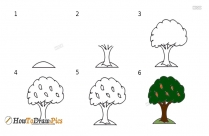 How To Draw A Mango Tree