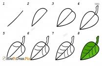How To Draw Step By Step Manga