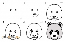 How To Draw A Panda Face