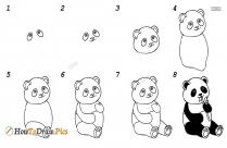 Step By Step Pandas Drawing
