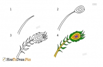 How To Draw A Peacock Feather Step By Step For Beginners