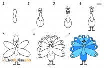How To Draw A Peacock With Colour
