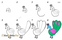 How To Draw A Peacock Step By Step With Pencil