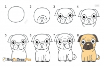 How To Draw Dog Pictures