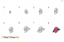How To Draw Flower Pictures