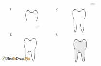 How To Draw A Tooth