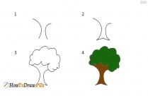 How To Draw Tree Pictures