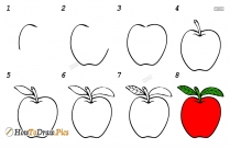 How To Draw An Apple Step By Step