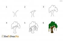 How To Draw Banyan Tree