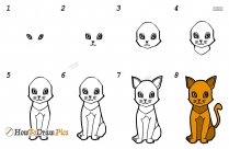 How To Draw Cat Easy