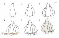 How To Draw Garlic