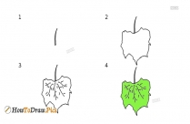 How To Draw Grapes Leaves