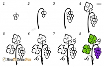 How To Draw Fruits Step By Step