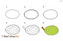 How To Draw Jackfruit