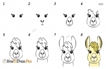 How To Draw Llama Fortnite Easy