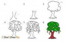 How To Draw Mango Leaf
