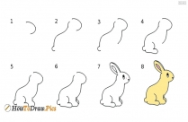 How To Draw Rabbit Step By Step Drawing Images