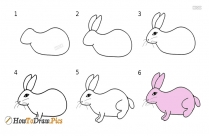 How To Draw Rabbit Step By Step