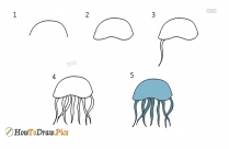 How To Draw Step By Step Jellyfish