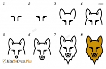 How To Draw Step By Step Wolf
