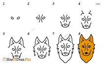 How To Draw A Step By Step Wolf