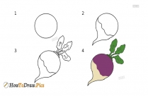 How To Draw Brinjal Step By Step