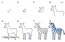 How To Draw Zebra